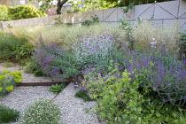 Gravel garden, Geranium 'Patricia', Euphorbia seguieriana subsp. niciciana, Salvia nemorosa 'Amethyst', Deschampsia cespitosa 'Goldschleier', Erigeron karvinskianus, Lychnis coronaria