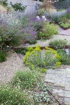 Cor-Ten steel step in gravel garden, Erigeron karvinskianus, Euphorbia seguieriana subsp. niciciana, Salvia nemorosa 'Amethyst', Lamium maculatum 'Beacon Silver', Zizia aurea, Lychnis coronaria