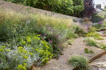 Gravel garden, Geranium 'Patricia', Euphorbia seguieriana subsp. niciciana, Deschampsia cespitosa 'Goldschleier', Sanguisorba officinalis 'Red Thunder', Salvia nemorosa 'Amethyst'