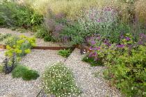 Gravel garden, Geranium 'Patricia', Zizia aurea, Euphorbia seguieriana subsp. niciciana, Salvia nemorosa 'Amethyst', Deschampsia cespitosa 'Goldschleier', Erigeron karvinskianus, Lychnis coronaria