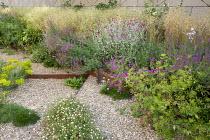 Gravel garden, Geranium 'Patricia', Zizia, aurea, Euphorbia seguieriana subsp. niciciana, Salvia nemorosa 'Amethyst', Deschampsia cespitosa 'Goldschleier', Erigeron karvinskianus, Lychnis coronaria