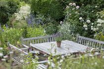 Wooden benches around table on patio, umbrella, Agastache 'Blackadder', Rosa 'Alba Maxima' and 'Sharifa Asma', Nerium oleander, Lychnis coronaria 'Alba'