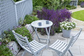 Blue painted wooden table and chairs on stone patio, trellis screen, osteospermum, salvia