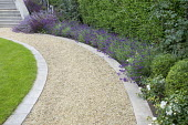 Curving gravel path with stone edging, lavender