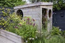 Wooden playhouse, Verbena bonariensis, penstemon