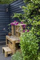 Wooden play kitchen on patio, dark painted fence, penstemon, Trachelospermum jasminoides
