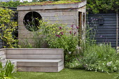 Astroturf lawn, built-in timber bench, wooden playhouse with living green roof, black painted fence, penstemon, Verbena bonariensis
