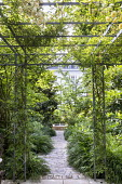 Rose-covered pergola, Hakonechloa macra edging stone path leading to raised pool and fountain, euphorbia, magnolia, disporum, framed view