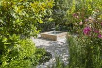 Magnolia, Rosa × odorata 'Mutabilis', Hakonechloa macra, rosemary, square raised pond and fountain on stone patio, Pittosporum tobira