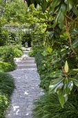 Stone path and steps leading to pool and fountain, Hakonechloa macra, magnolia