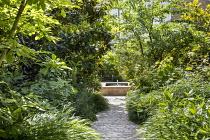 Stone path leading to raised pool and fountain, Hakonechloa macra, hydrangea, magnolia, disporum