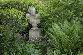 Stone bust ornament on plinth, Geranium macrorrhizum, ferns, shady corner