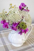 Cut stems of Sweet peas and Daucus carota in white ceramic jug