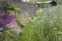 Geranium 'Patricia', Stipa tenuissima, Lychnis coronaria, mown grass path, willow screen, Eryngium planum