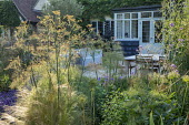 Foeniculum vulgare, Verbena bonariensis, table and chairs on patio by house