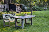 Wooden table and bench on lawn under fruit tree, log storage