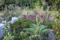 Cynara cardunculus, poppy seedheads, Penstemon 'Raven', Stipa gigantea, Salvia nemorosa 'Caradonna', Foeniculum vulgare