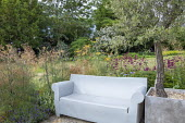 Contemporary outdoor sofa, Foeniculum vulgare, Penstemon 'Raven', Stipa gigantea, Olea europaea in large container