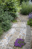 Curving brick and pebble path, thyme in paving cracks