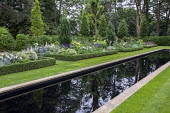 Formal reflective rectangular pool, pittosporum, eryngium, Salvia 'Amistad', lupins, leucanthemum, Taxus baccata 'Fastigiata' and agapanthus in box-edged border