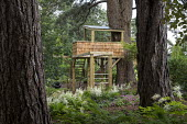 Children's play area amongst trees, treehouse