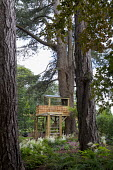Children's play area amongst trees, treehouse, swing, astilbes
