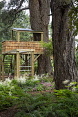 Children's play area amongst trees, treehouse, astilbes