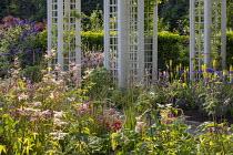 Filipendula ulmaria, trellis pergolas, hydrangea, agapanthus, kniphofia, campanula, buddleja