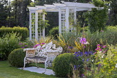 Metal bench flanked by clipped box balls, wooden pergola, fuchsia, hydrangea, astelia