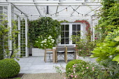 Table and chairs on stone paving under pergola by house, Hydrangea arborescens 'Annabelle' in raised bed