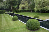 Formal rectangular pond, clipped box balls