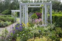 Trellis pergola arches, hydrangea, agapanthus, kniphofia, campanula, buddleja