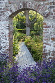 Archway in brick wall, lavender stone path, hydrangea, Aruncus 'Misty Lace'