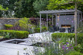 Umbrella trained pleached Platanus × acerifolia trees over terrace, clipped Buxus sempervirens hedge, Verbena bonariensis, stepping stones across formal pool, outdoor sofas under grey painted pergola...