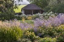 Echinacea purpurea 'White Swan', Perovskia 'Blue Spire', Rosa 'Iceberg', Pennisetum 'Fairy Tails', garage carport