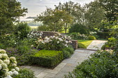 Stone path, clipped Buxus sempervirens cube, Rosa 'Penelope'