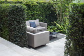 Outdoor sofas with cushions on outdoor carpet rug, yew hedge screen, garden 'room' enclosure