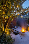 Contemporary chairs and firepit on stone patio, multi-stemmed prunus, ferns, hanging candle lanterns