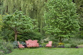 Indoor sofa and chairs on lawn outside, outdoor lounge, Catalpa erubescens 'Purpurea', Liquidambar styraciflua, woodland border with heuchera, nepeta, geraniums, alliums, hosta, pulmonaria, aruncus