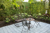 Metal bench, table and chairs on patio in hornbeam hedge enclosure, hydrangea in border, garden 'room'