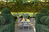 Metal table and chairs on terrace under pergola, topiarised yew hedge enclosure