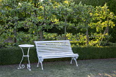 Espaliered apple tree screen, white bench and table