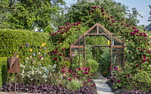Metal-framed greenhouse, rose arch, tomatoes, heuchera