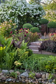 Rose garden, pebble edging, ferns, rose arbour, steps, heuchera, clipped Buxus sempervirens in pots