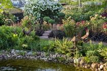 Rose garden, Rosa 'Charles Austin', Rosa 'Munstead Wood', pebble edging, ferns, Rosa 'White Flight' arbour, steps, heuchera, clipped Buxus sempervirens in pots