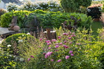 Metal sculptures in rose garden, Matteuccia struthiopteris, heuchera, Darmera peltata
