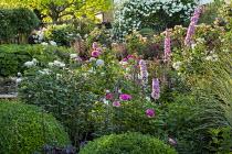 Rosa 'Gertrude Jeckyll', Rosa 'Tranquillity', delphiniums, Rosa 'Charles Austin', Rosa 'Munstead Wood', Rosa 'White Flight' arbour