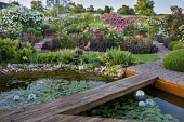Wooden bridge across water lily pond, pebble edging, rose garden, heuchera