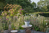 Rustic wooden stake fence, bucket of cut allium stems on mosaic table and chairs, roses, metal pergola