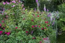 Roses, foxgloves